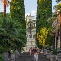 Сочинский дендрарий: история, растения, фотографии, смотровая площадка
