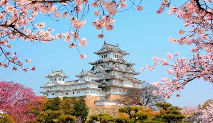 Японский язык самостоятельно, мой опыт