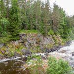 Заповедник «Кивач»: водопад Кивач, дендрарий, музей природы