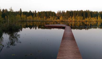 Пчелинское озеро близ деревни Пчелка