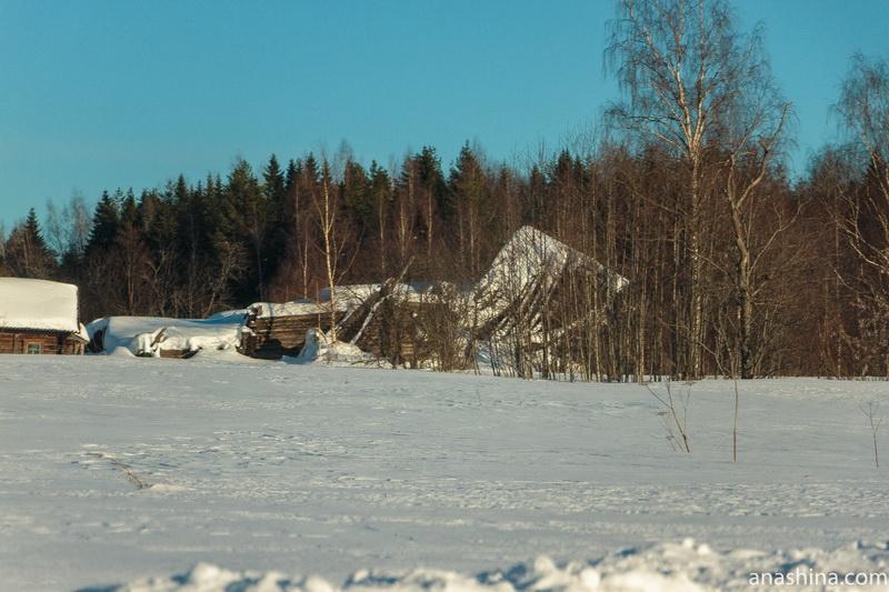 Дома в Фалилеево, Костромская область