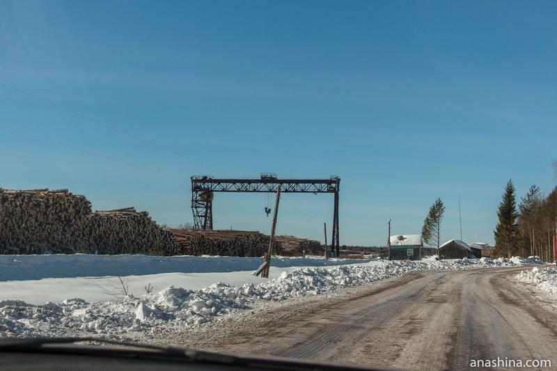 Склад леса около станции Гремячий Монзенской железной дороги