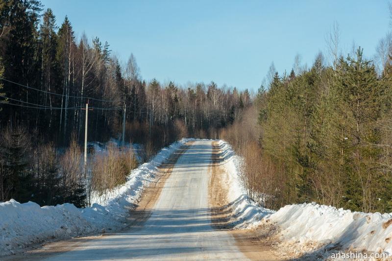 Вологодская область, дорога