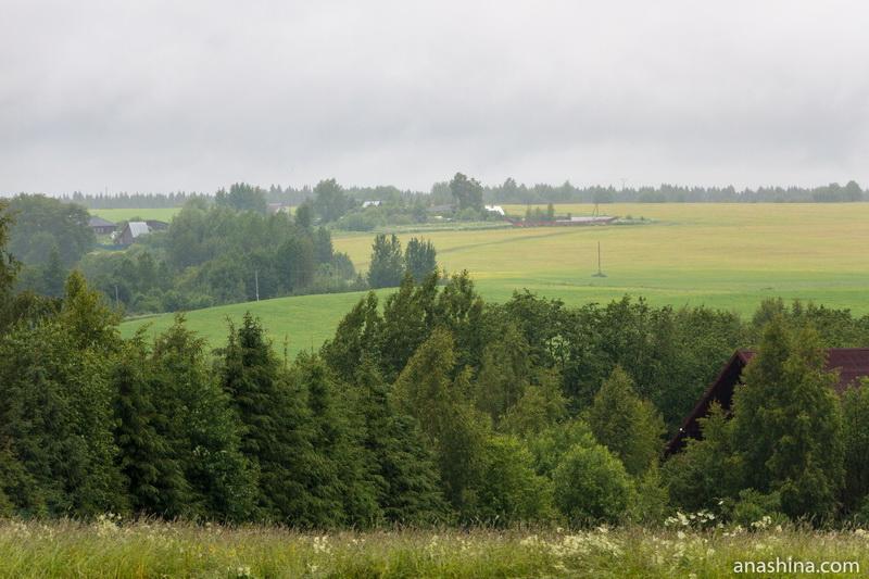 Поле близ Семёнково, Вологодская область
