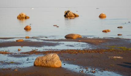 Дорога от Сестрорецка до Зеленогорска и пейзажи Балтийского моря