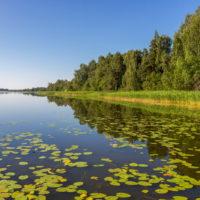 Озеро Мстино и его окрестности