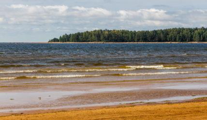 Пляж на Балтийском море: бухты Жёлтая и Окунёвая