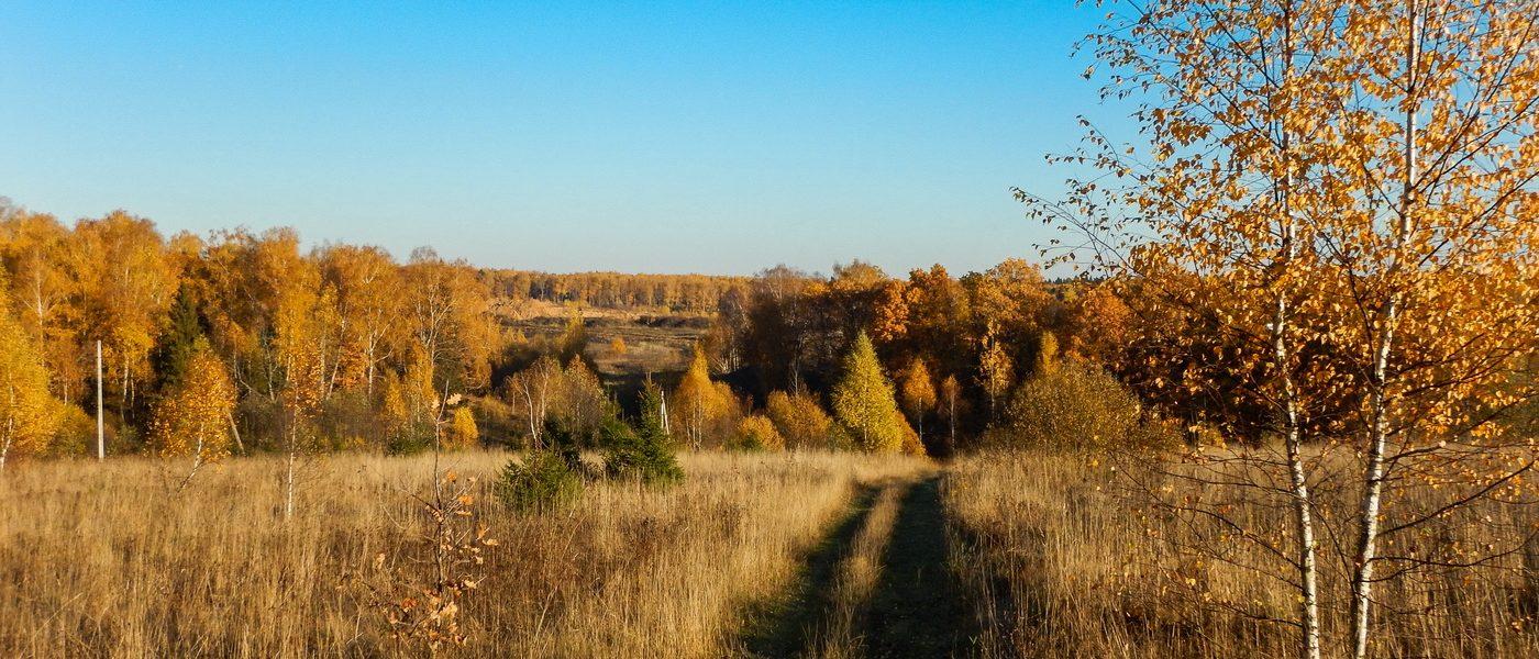 Контрасты бытия: янтарная осень и карьер в Протасово