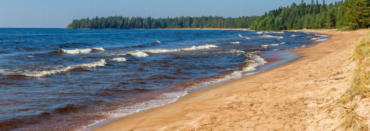 Восточное Приладожье, часть 2: песчаный пляж близ Видлицы