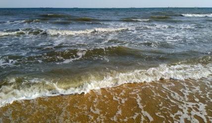 Отдых в станице Голубицкая на Азовском море