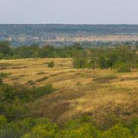 Трасса М-4 «Дон» в Краснодарском крае, Ростовской и Воронежской областях