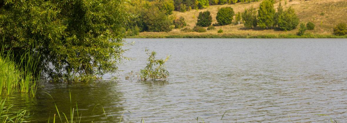 Базы отдыха «Чистые пруды» и «Арт-Пенза» близ поселка Рамзай под Пензой