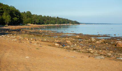 Финский залив Балтийского моря в Зеленогорске и немного о Терийоки