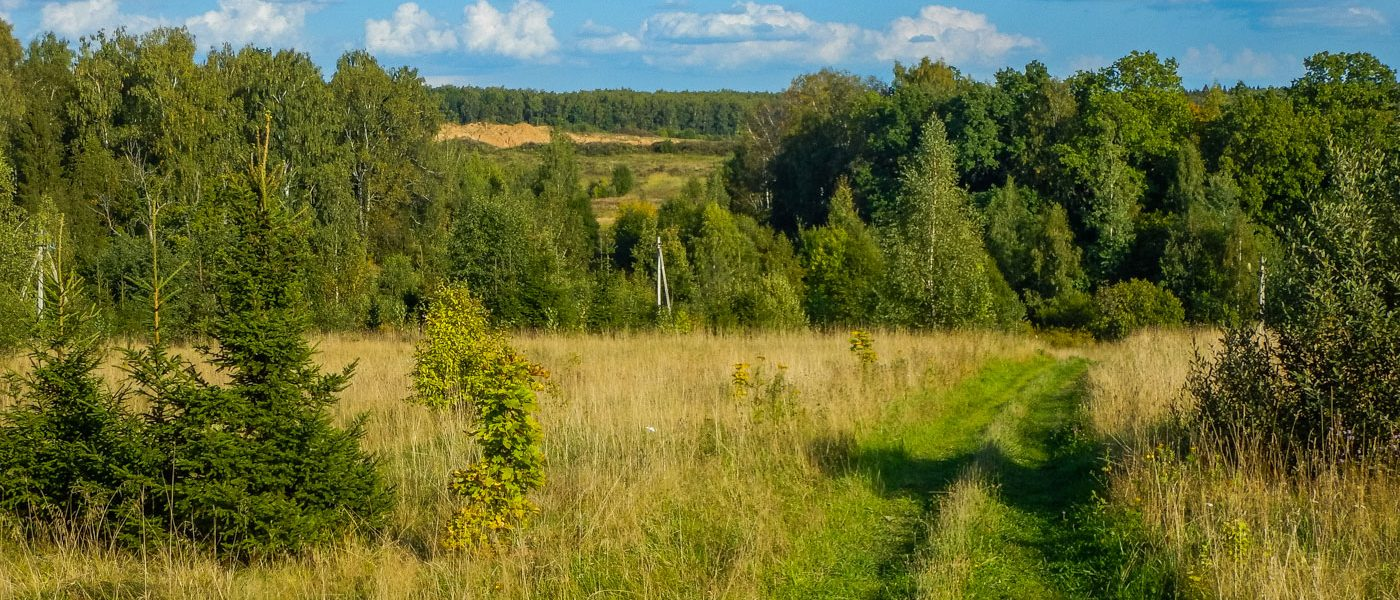 На лошади в протасовские поля по границе лета и осени