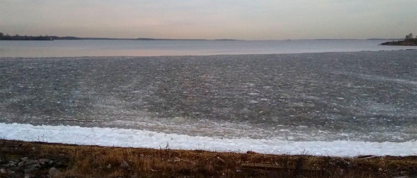 Спонтанная декабрьская автопрогулка в Дубну на Иваньковское водохранилище