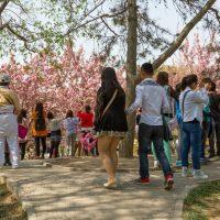 Почему нас так раздражают китайские туристы?