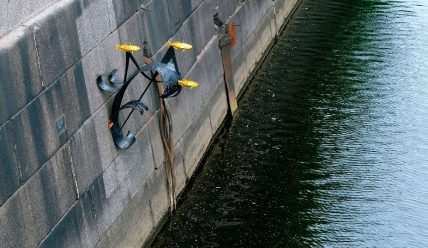 Маленькая рыбка колюшка, спасшая жизни блокадников