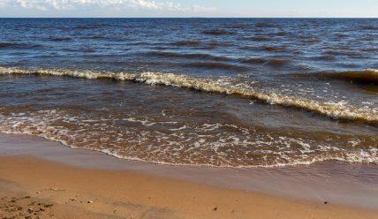 Есть ли в Санкт-Петербурге море? Или только залив?
