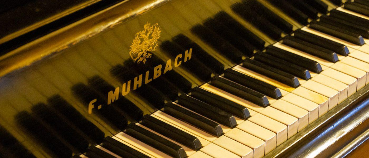 Новая жизнь старых музыкальных инструментов: музей-усадьба Владимира Виноградова «Семья роялей»
