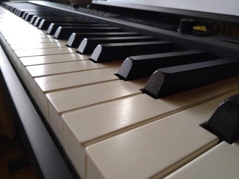 Мое цифровое пианино Casio CDP-S350