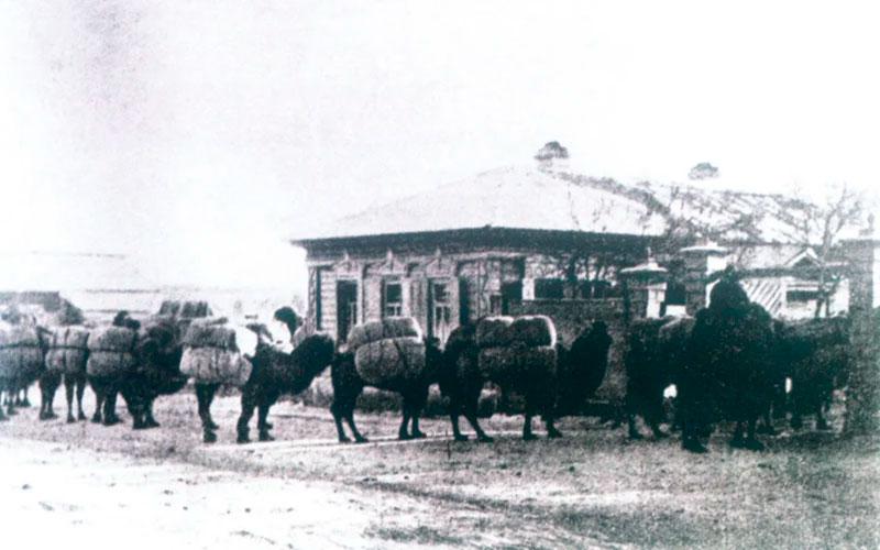 Прибытие чайного каравана из Монголии в Кяхту