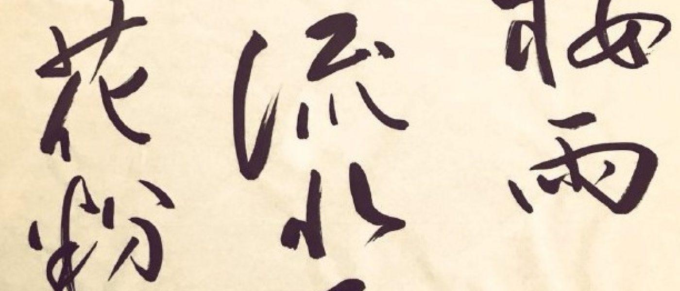 Беседуем с автором проекта Haiku Daily Анной Семидой о Японии, японцах и хайку