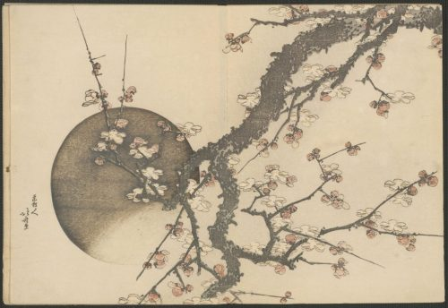 Кацусика Хокусай (1760-1849). Луна и цветы сливы