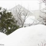 Posle-snegopada-1