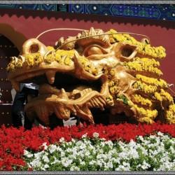 Цветник-дракон в парке Тяньтань, Пекин
