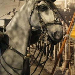 Оголовье боевой немецкой лошади