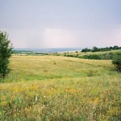 Степь неподалеку от станицы Краснодонецкая, Ростовская область