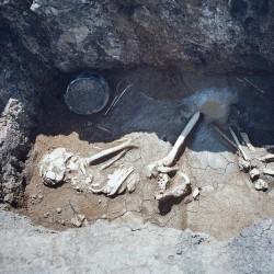 Захоронение бронзового века в Нижнедонских Частых курганах