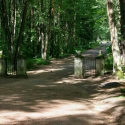 Павловский парк. Старая Сильвия