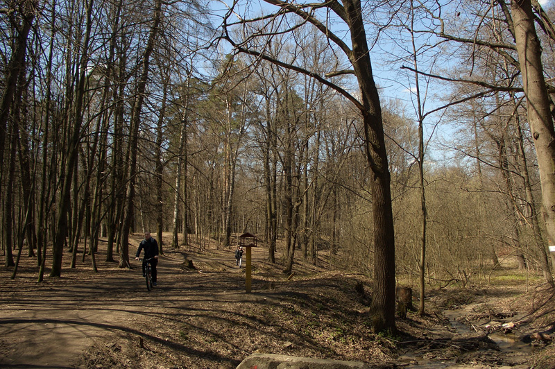 Тимирязевский парк, его флора,