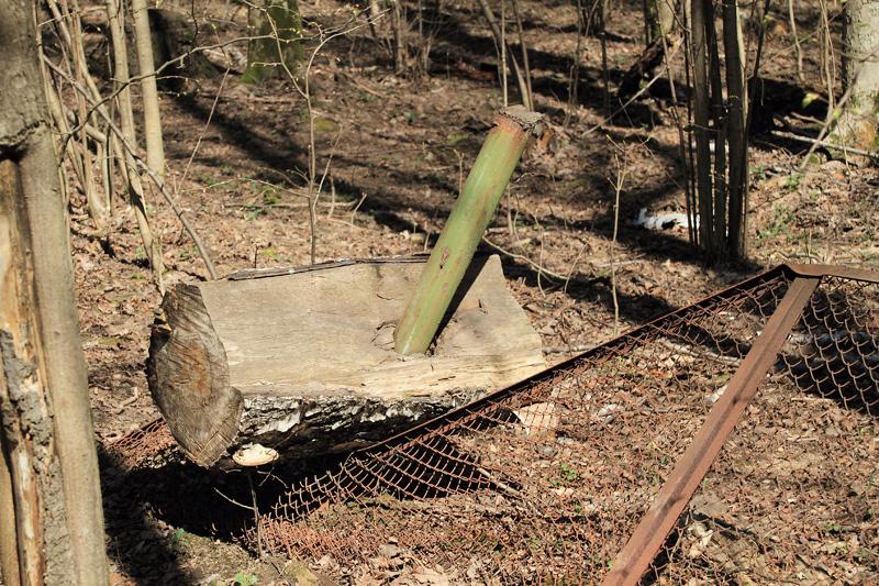 Ствол дерева, упавший на забор, Тимирязевский лесопарк