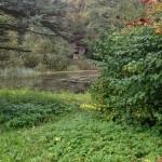 Музей соколиной охоты — гармония природы и человека