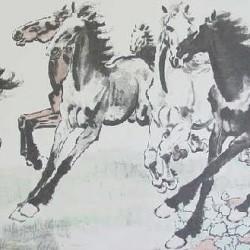 Loshadi-16